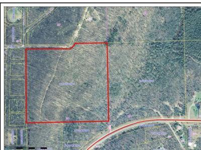 Crandon Residential Lots & Land For Sale: Off Glen St E #40 ACRES