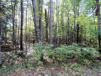 Rhinelander Residential Lots & Land For Sale: On Cedar Ln #Lot 7