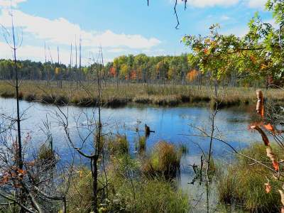 Lac Du Flambeau WI Residential Lots & Land For Sale: $199,000