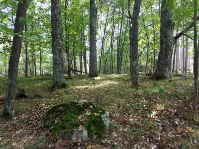 Hazelhurst WI Residential Lots & Land For Sale: $89,500