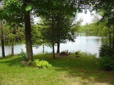Watersmeet MI Single Family Home For Sale: $98,200