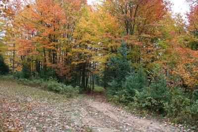 Crescent, Newbold, Pelican, Pine Lake, Rhinelander City, Sugar Camp, Woodboro Residential Lots & Land For Sale: Acreage Hwy 17