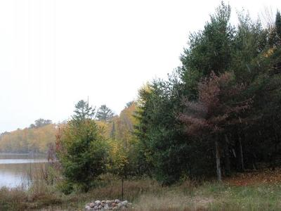 Vilas County Residential Lots & Land For Sale: 2270 Anvil Lake Rd E