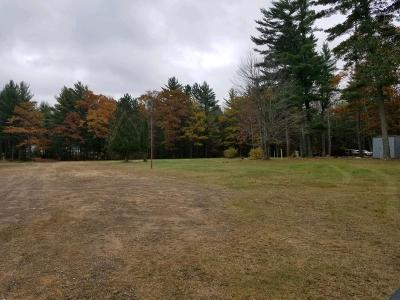 Eagle River Commercial For Sale: 1016 Hwy 45