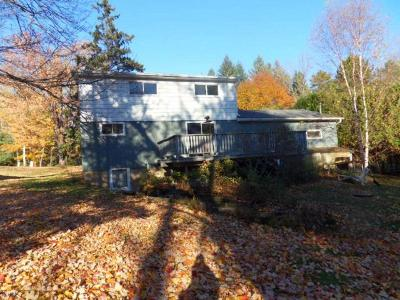 Forest County, Iron Wi County, Langlade County, Lincoln County, Oneida County, Vilas County Single Family Home For Sale: 5299 Sandy Loop Rd