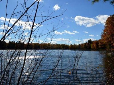 Lac Du Flambea WI Residential Lots & Land For Sale: $124,900