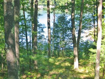 Lake Tomahawk WI Residential Lots & Land For Sale: $124,900
