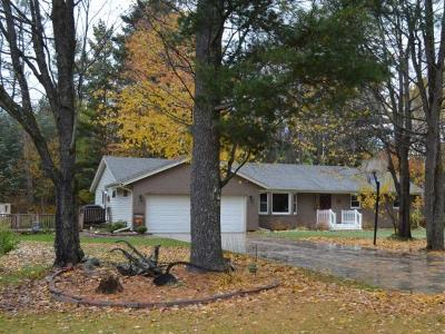 Crandon Single Family Home For Sale: 10085 Airport Rd