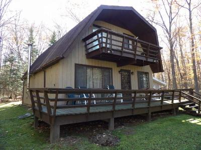 Langlade County, Forest County, Oneida County Single Family Home For Sale: 3120-07 Black Ln