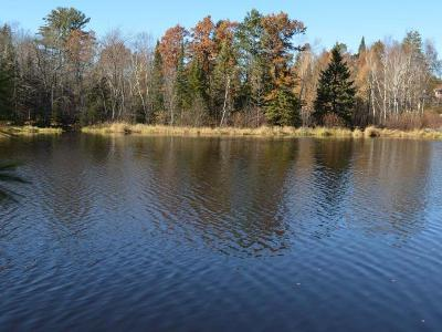 Tomahawk WI Residential Lots & Land For Sale: $120,900