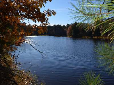 Tomahawk WI Residential Lots & Land For Sale: $142,900