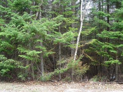 Rhinelander Residential Lots & Land For Sale: On Pelican Lake Rd