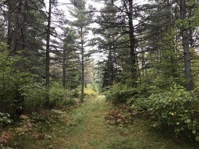 Eagle River WI Residential Lots & Land For Sale: $58,900