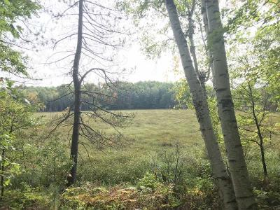 Rhinelander Residential Lots & Land For Sale: 5 Ac. Flannery Lake Rd