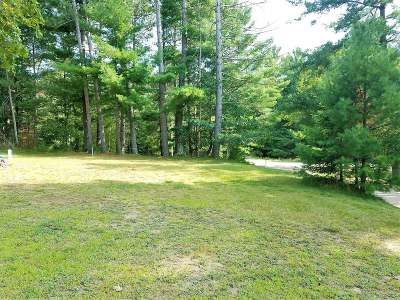Newbold WI Residential Lots & Land For Sale: $29,900