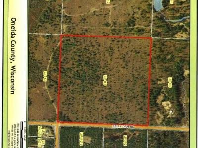 Rhinelander Residential Lots & Land For Sale: On Kelly Dam Rd