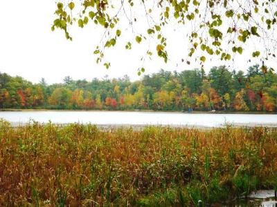 Arbor Vitae WI Residential Lots & Land For Sale: $25,000