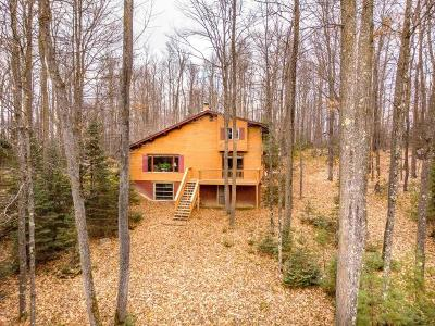 Lincoln County, Price County, Oneida County, Vilas County Single Family Home For Sale: 4099 Mill Lake Rd