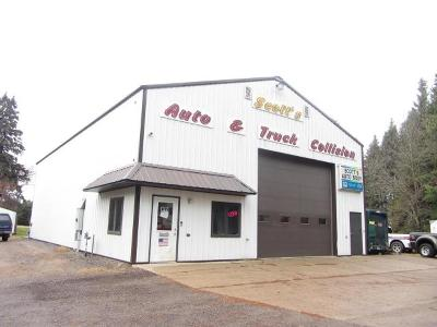 Eagle River WI Commercial For Sale: $399,000