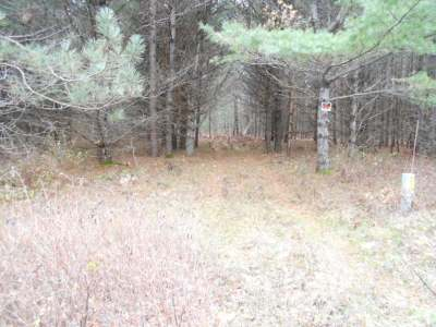 Elcho Residential Lots & Land For Sale: Lot 12 Eveland's Way