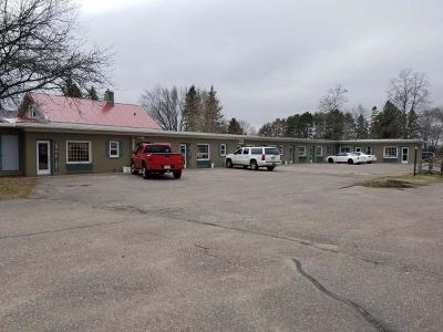 Commercial For Sale: 836 Superior St S