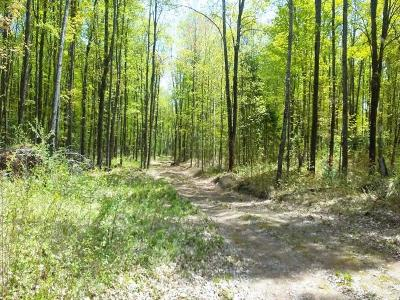 Residential Lots & Land For Sale: 7618n Lake Six Rd