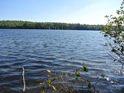 Three Lakes WI Residential Lots & Land For Sale: $175,000