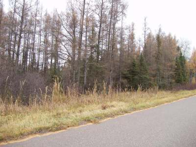 Butternut Residential Lots & Land For Sale: Near Wagner Vogt Rd