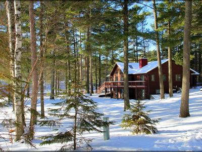 Manitowish Waters WI Single Family Home For Sale: $419,000