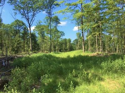 Residential Lots & Land For Sale: On Hwy 17 #60 AC
