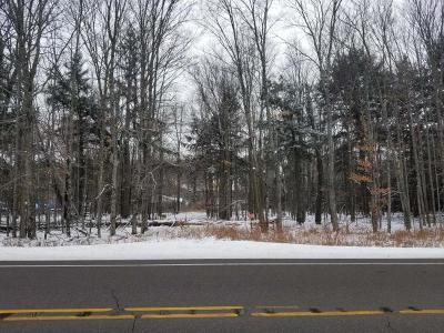 Three Lakes WI Commercial For Sale: $32,500