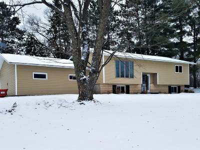 Park Falls Single Family Home For Sale: 1024 Saunders Ave