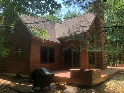 Minocqua Single Family Home For Sale: 9684 Old Hwy 70