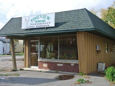 Three Lakes WI Commercial For Sale: $119,900