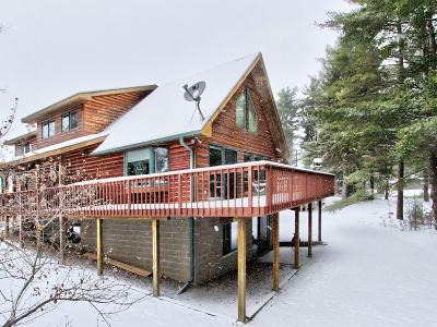 Eagle River WI Single Family Home For Sale: $339,000