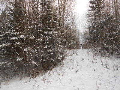 Ogema Residential Lots & Land For Sale: Near County Line Rd