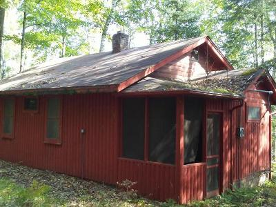 Forest County, Iron Wi County, Langlade County, Lincoln County, Oneida County, Vilas County Single Family Home For Sale: 6472 #2 High Lake Rd