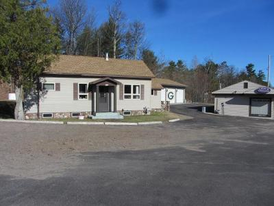 Minocqua Single Family Home For Sale: 8135-37 Hwy 51 Bus