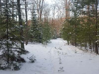 Residential Lots & Land For Sale: Lot 16 Hwy 155