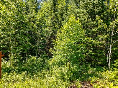 Residential Lots & Land For Sale: Lot 13 Sanctuary Rd