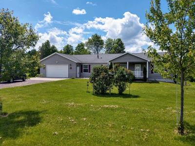 Aniwa, Elcho, Summit Lake, Bryant, Deerbrook, Elton, Lily, Pearson, Phlox, Pickerel, Polar, White Lake, Birnamwood Single Family Home For Sale: W4673 Hwy 64