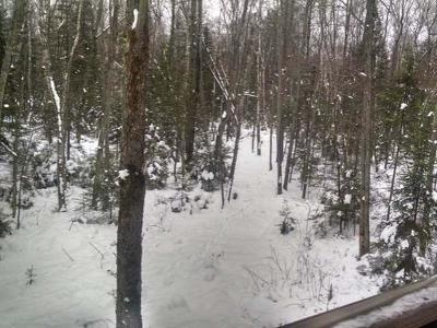 Residential Lots & Land For Sale: On Hwy 17 #Lot 1