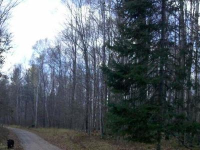 Residential Lots & Land For Sale: On Razorback Rd