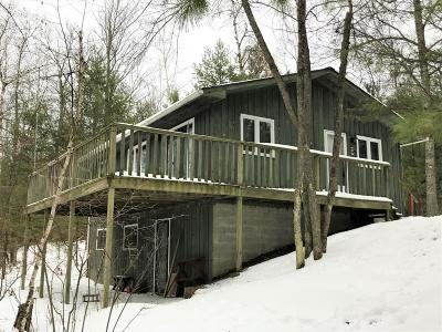 Forest County, Iron Wi County, Langlade County, Lincoln County, Oneida County, Vilas County Single Family Home For Sale: 1308 Riverview Dr