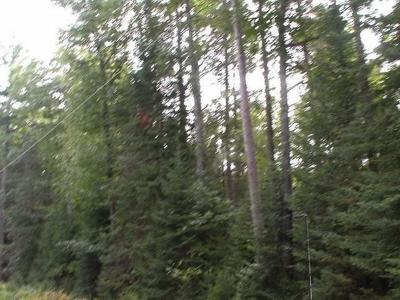 Residential Lots & Land For Sale: Lot 7 Old Hwy 70
