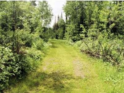 Fifield Residential Lots & Land For Sale: On Cedar Rapids Rd