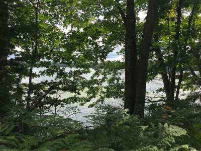 Pickerel Residential Lots & Land For Sale: Off Doemel Ln