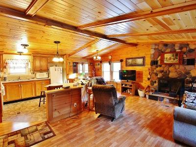 Eagle River WI Single Family Home For Sale: $109,900