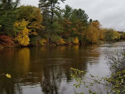 Lake Tomahawk WI Residential Lots & Land For Sale: $59,900