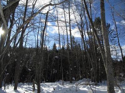 Residential Lots & Land For Sale: On Cth J #1 &
